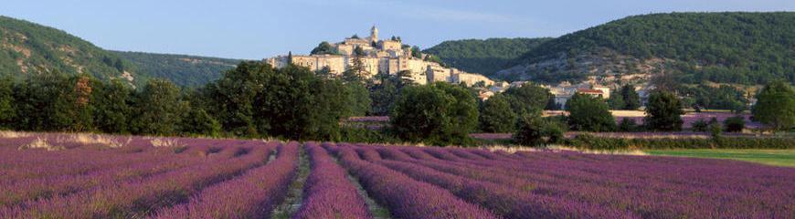 Rent villa South of France